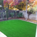 Synthetic Grass 5