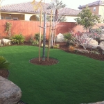 Synthetic Grass 25
