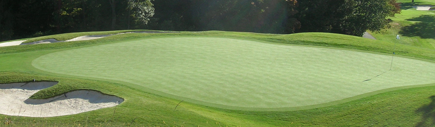Synthetic Putting Greens Give the Same Look and Feel of Natural Golf Greens Tested to the highest standards, a synthetic putting green at your home is not only a beautiful...