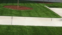 Synthetic grass is the perfect choice for any commercial landscape application. Using synthetic grass is not only good for the environment and helps contribute to building green, it also improves […]